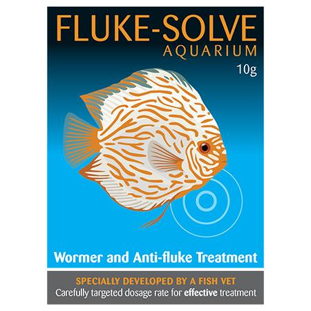 Fluke Solve Aquarium